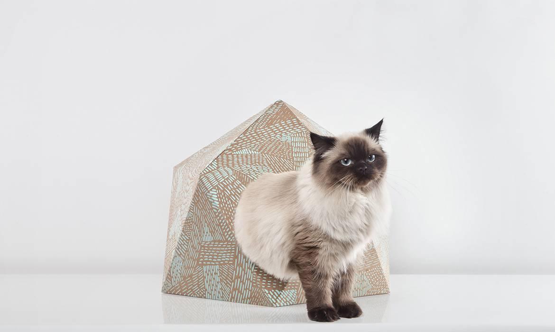 panier pour chien ou chat des id es design et diy. Black Bedroom Furniture Sets. Home Design Ideas