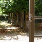 Marçon (Sarthe), le 29 juin. L'allée de tilleuls au petit matin.