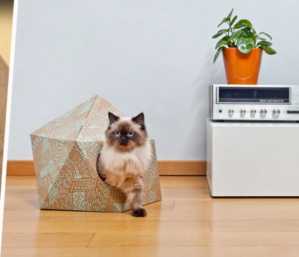 Version luxe ou DIY, trois paniers pour chat et chien à adopter d'urge