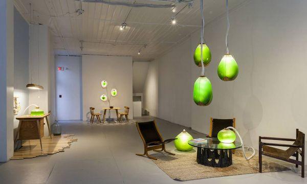 Deux artistes fabriquent une lampe qui génère de l'énergie grâce à une algue