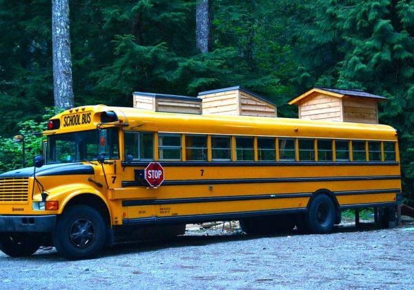 Tiny House Et Bus Aménagé Ils Habitent Dans Un Bus