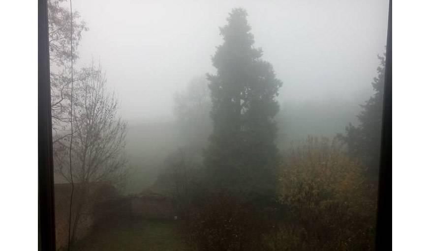 La brume de la campagne bourguignonne à Chevagny (Saône-et-Loire), le 12 novembre.