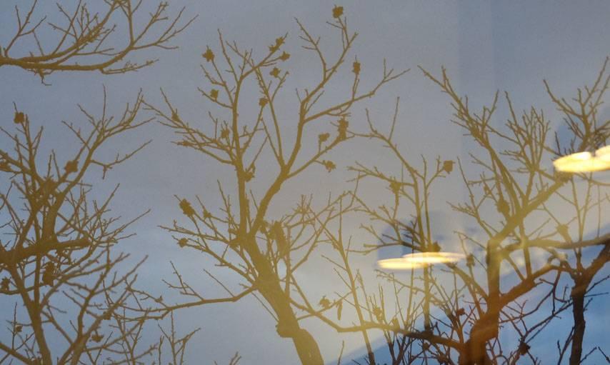 Reflet dans la fenêtre à La Cadière-d'Azur, dans le Var, le 6 décembre.