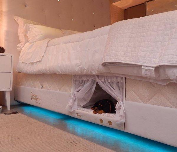 Un panier pour chien intégré au lit