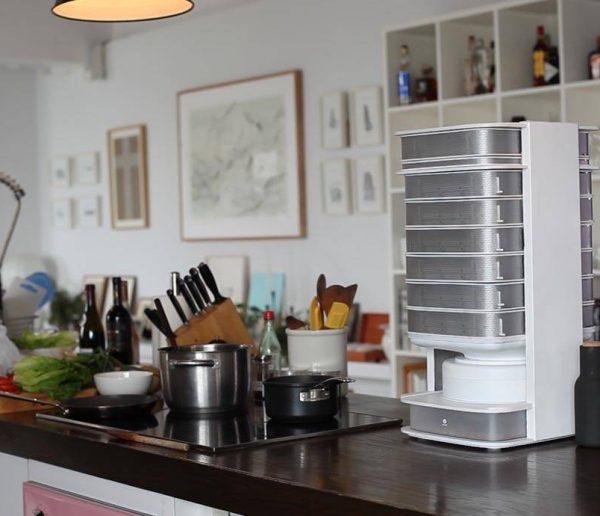 Demain, une ruche à insectes dans toutes les cuisines ?