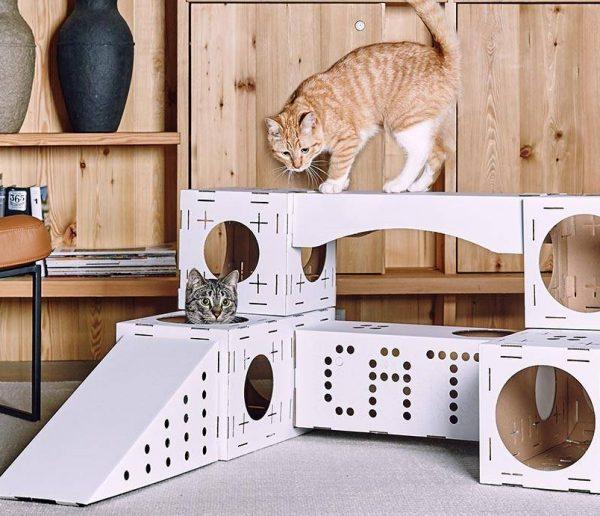 Blocks Poopy Cat : cubes à assembler pour chats joueurs