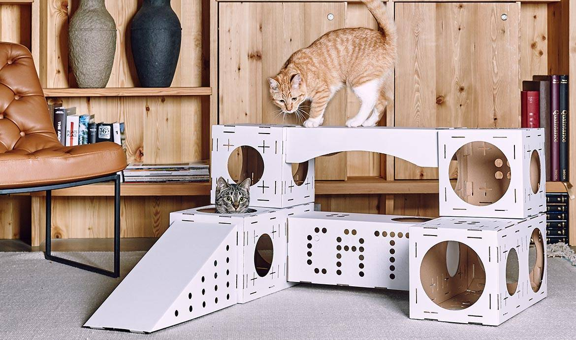 maison pour chat en carton fashion designs. Black Bedroom Furniture Sets. Home Design Ideas