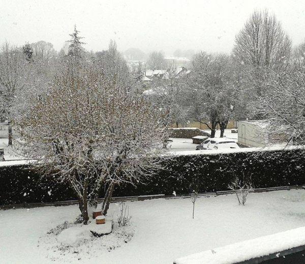 Un manteau de neige sur nos jardins
