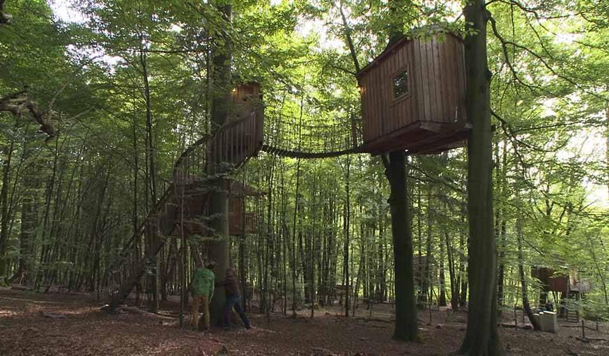 Une autre chambre de rêve au Baumhaushostel.