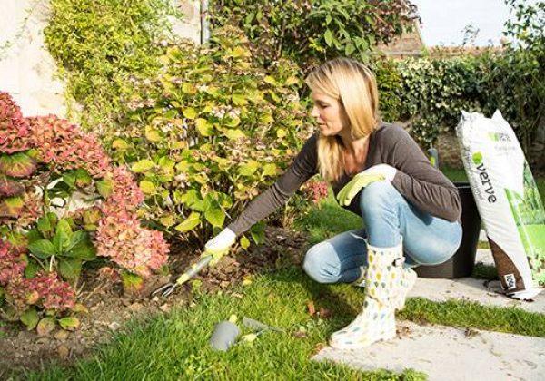 Un outil de jardin très pratique - Binette, râteau ...