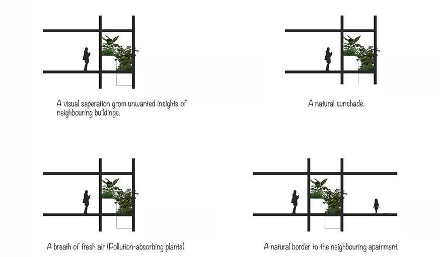 Les plantes forment des cloisons naturelles, purifient l'air et produisent de l'ombre.