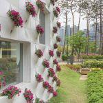 Les façades coréennes se parent de fleurs colorées.