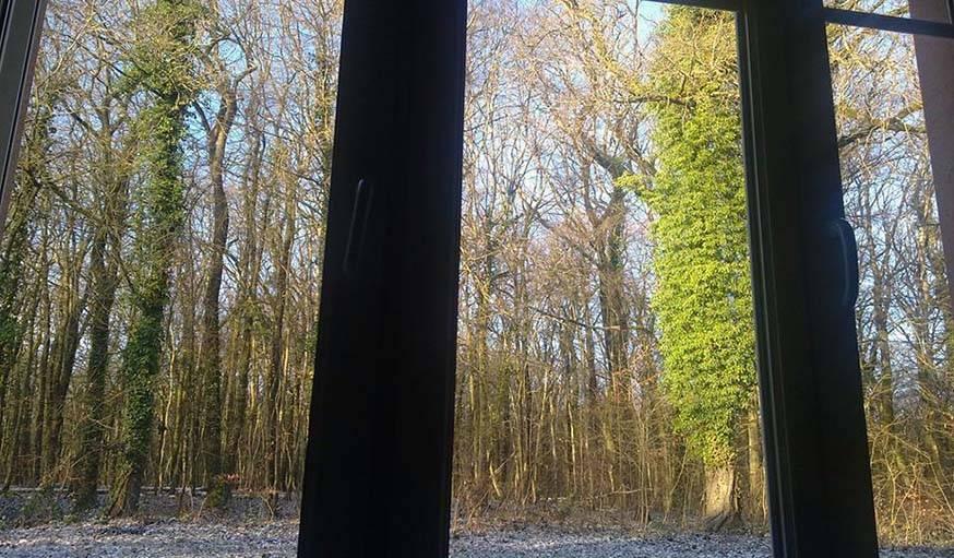 Une belle lumière se pose sur la commune de Marange Silvange (Moselle), le 20 mars.