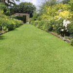 s cheresse pour conomiser l eau peindre sa pelouse en vert califonie. Black Bedroom Furniture Sets. Home Design Ideas