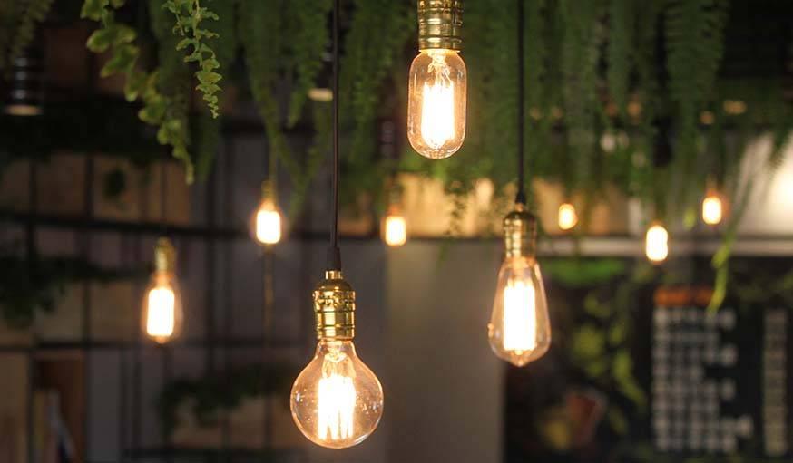 Lampes nues pour éclairer la verdure.