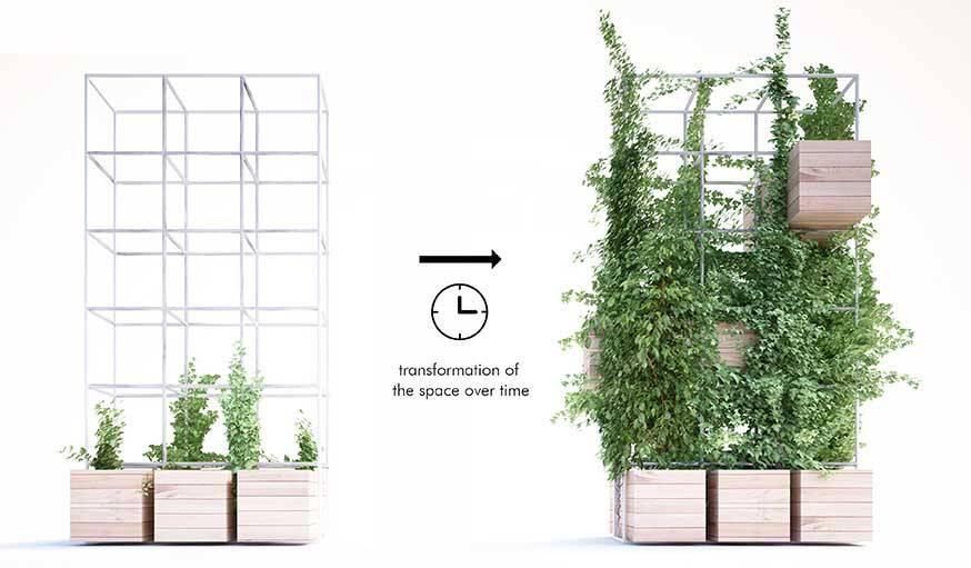 Des plantes grimpantes pour une déco évolutive.
