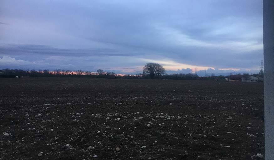 Champs a perte de vue, le mercredi 13 au soir, a? Kembs (Haut-Rhin).