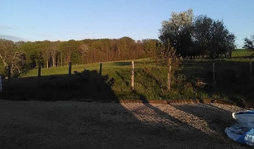Soleil du soir, rasant la campagne, à St-Julien de l'Herms (Isère), le 25 avril.