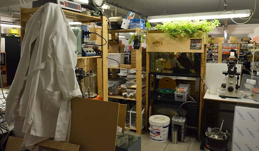Tout au fond de la grande salle, la section BioFabLab.
