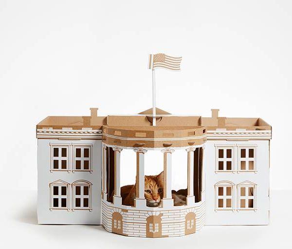 La Maison Blanche transformée en cachette pour chat