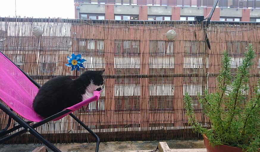 La pluie revient le 31 mai à Lille.
