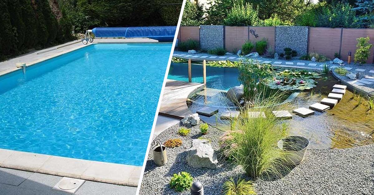 baignade naturelle transformer une piscine classique en bassin cologique. Black Bedroom Furniture Sets. Home Design Ideas