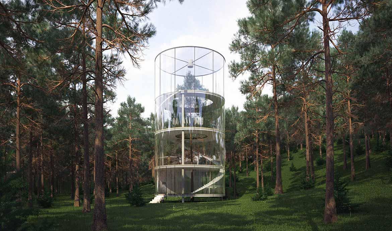 Cette fantastique maison s'élève autour d'un arbre
