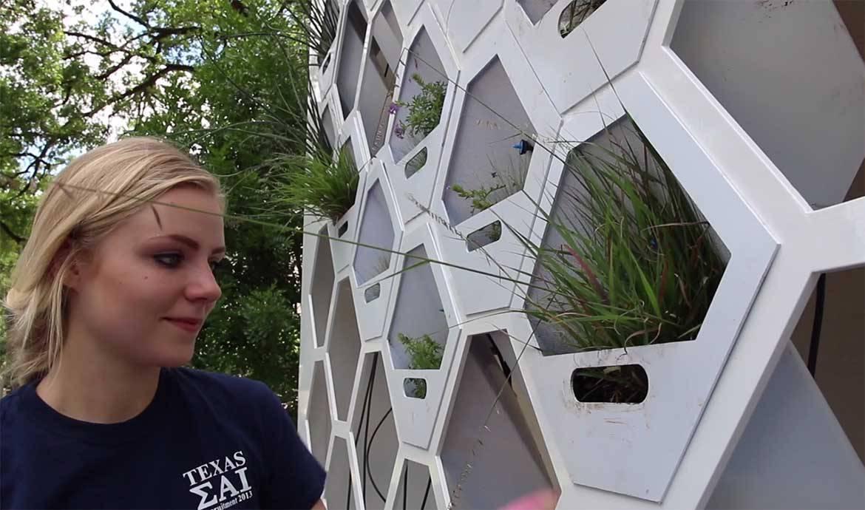 Un surprenant mur végétal modulable qui accueille des animaux