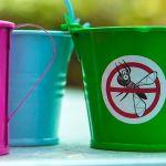 Pas besoin d'insecticide pour les éloigner du jardin.