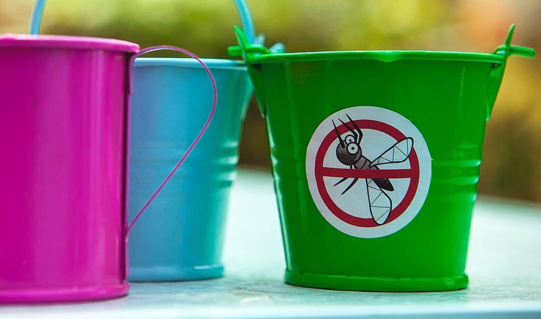 anti moustiques naturels 8 rem des pour loigner les moustiques sans insecticide. Black Bedroom Furniture Sets. Home Design Ideas