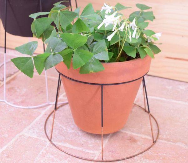 DIY : Transformer en un clin d'œil un abat-jour en support pour vos plantes