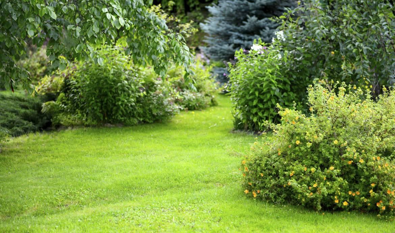 arborer son jardin elegant nouveau entretenir son jardin en un clic with arborer son jardin. Black Bedroom Furniture Sets. Home Design Ideas