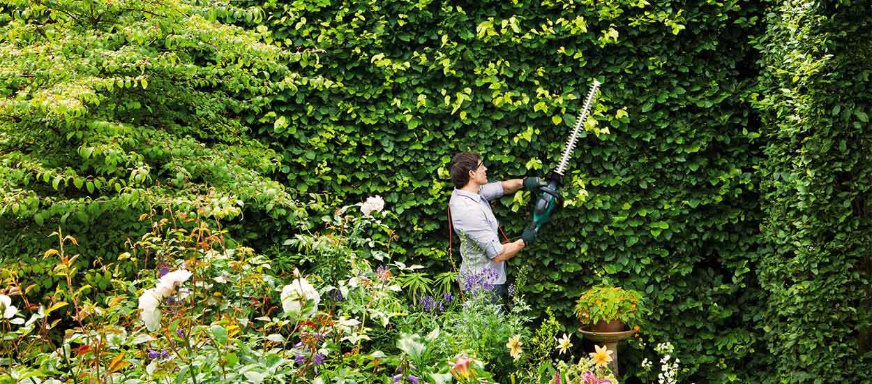 Comment prendre soin de son jardin à la rentrée ?