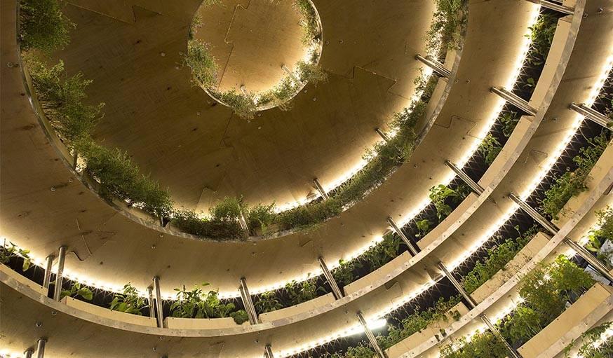 Le toit vu de l'intérieur de the grow room.