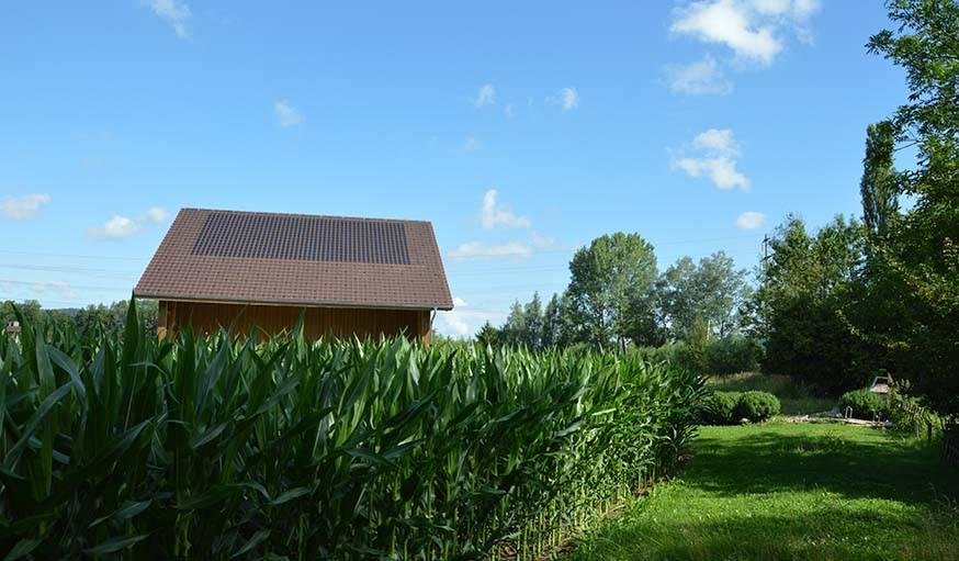 Les tuiles panotron demeurent discrètes dans un paysage de campagne