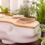 Vous pourrez désormais fabriquer votre propre compost grâce à ce composteur de table.