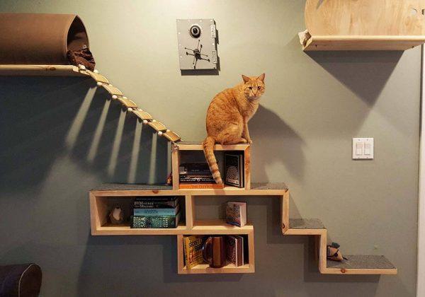 amenagement maison chat