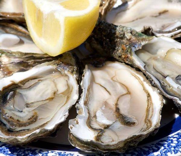 Pendant les fêtes, recyclez vos coquilles d'huîtres