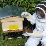 Bertrand Laurentin, fondateur de Label Abeille, fait la démonstration de sa ruche connectée.