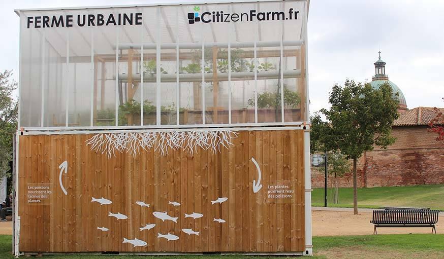 La ferme urbaine aquaponique installée à Toulouse.