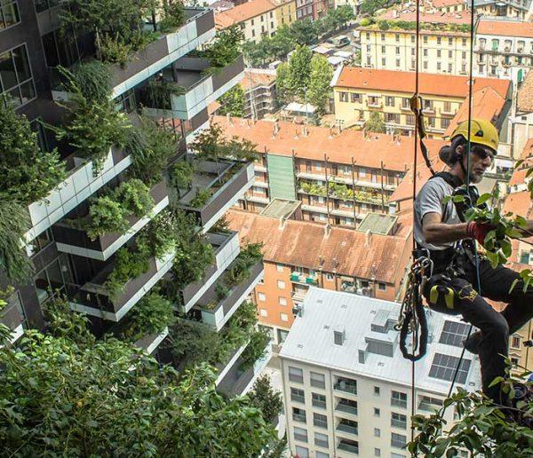 L'architecte qui fait pousser des forêts sur les gratte-ciel