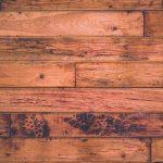 Vue d'un parquet en gros plan bois