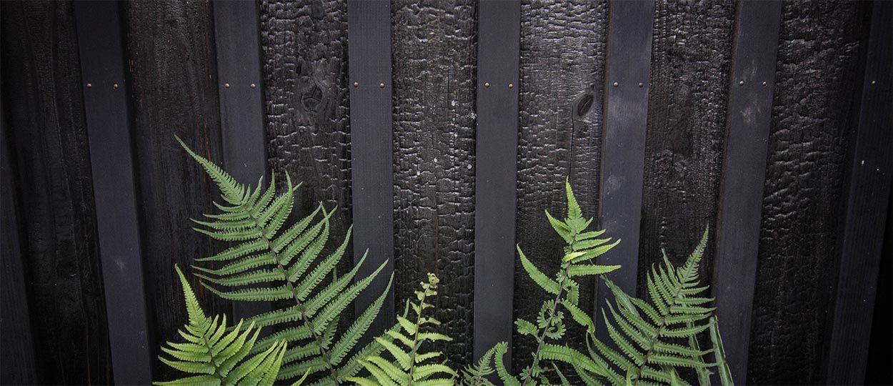 br ler le bois des maisons au japon br ler le bois pour. Black Bedroom Furniture Sets. Home Design Ideas