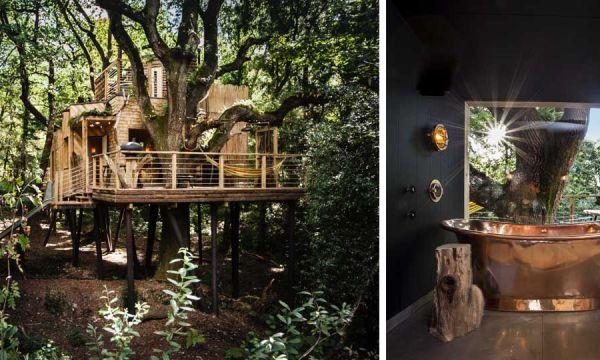 Une maison de rêve perchée dans les arbres