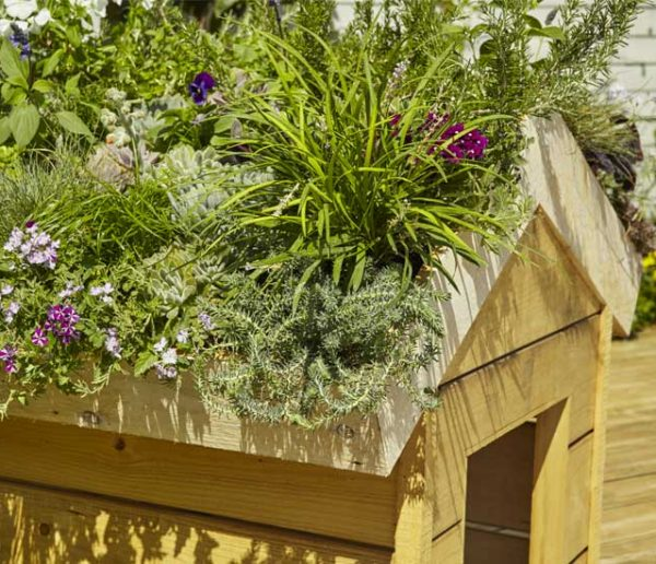 Tuto : Fabriquez une toiture végétale pour la niche de votre chien