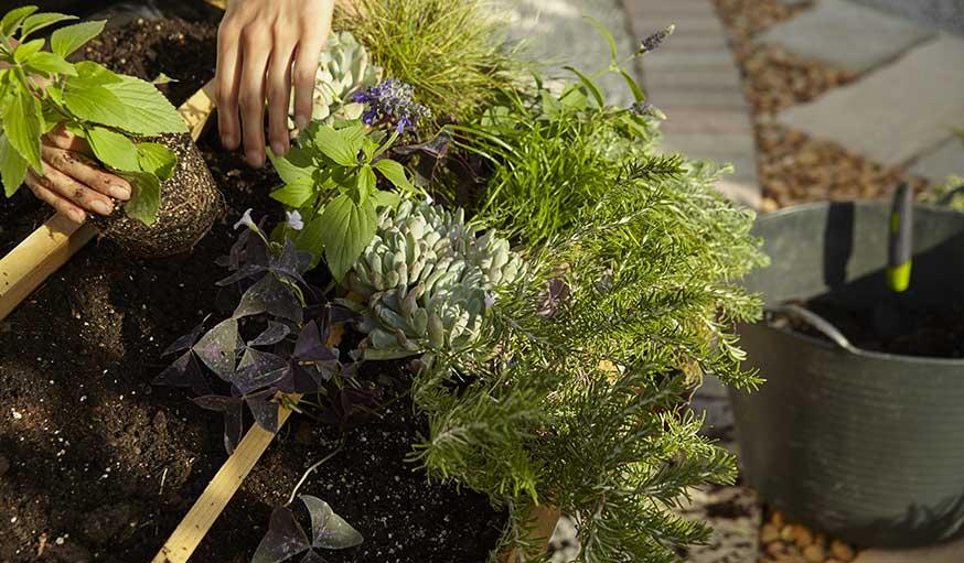 diy pour fabriquer un toit v g tal sur une niche atout d co de jardin. Black Bedroom Furniture Sets. Home Design Ideas
