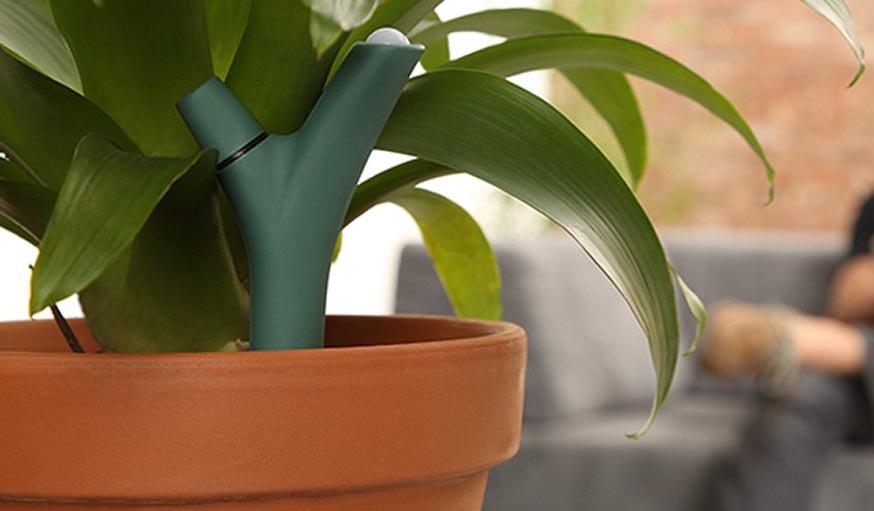 Le capteur pour plantes Flower Power.