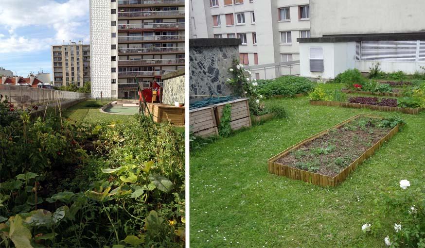 Les bacs potagers partagés sur la terrasse d'une résidence à Paris.