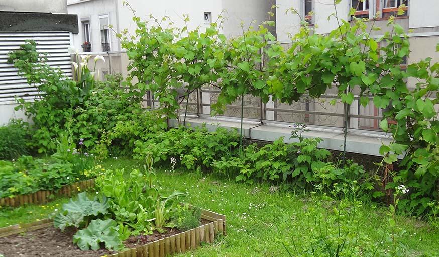 Et si en plus de partager les toits, on végétalisait cet espace ?