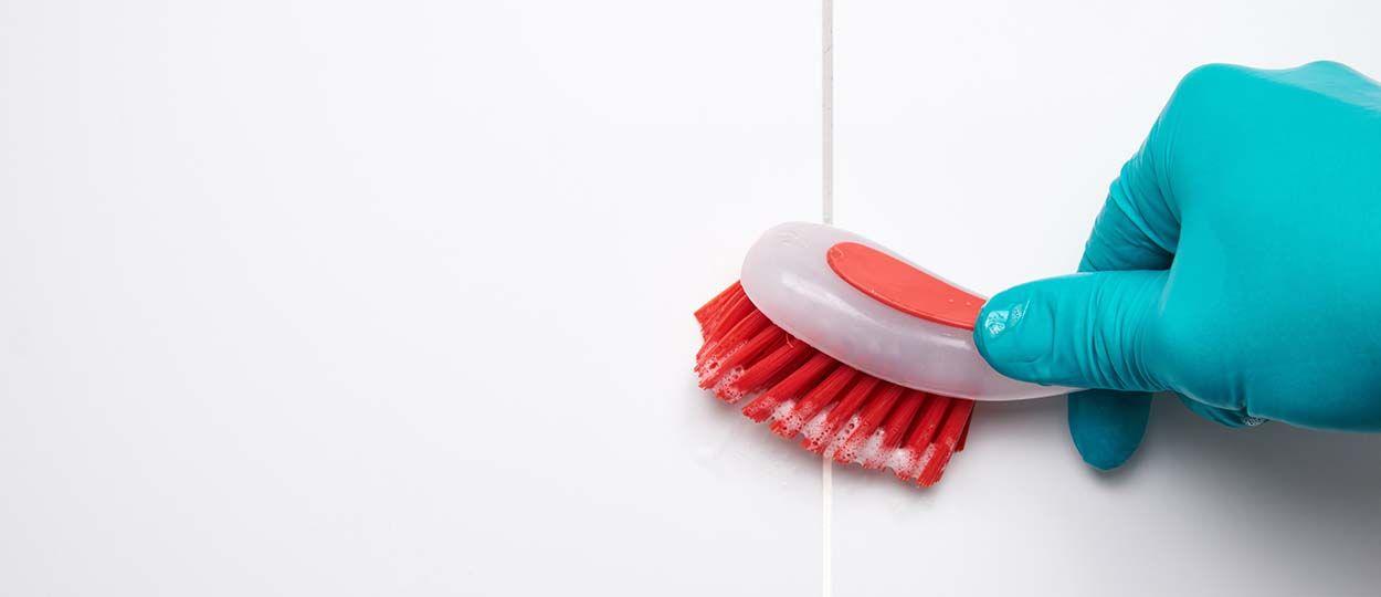 Nettoyant wc maison perfect nettoyant pour la cuvette des toilettes mis jour with nettoyant wc - Tuer un arbre avec de la javel ...